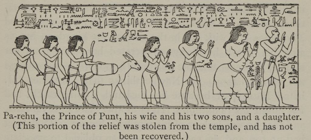 Pa-rehu and the prince of punt