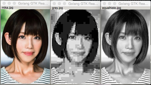 histogram equalization with openCV and golang example