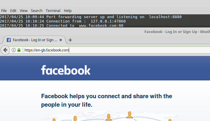 golang port forwarding localhost to facebook example