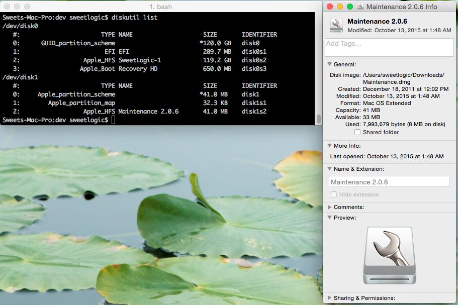 diskutil list command line output